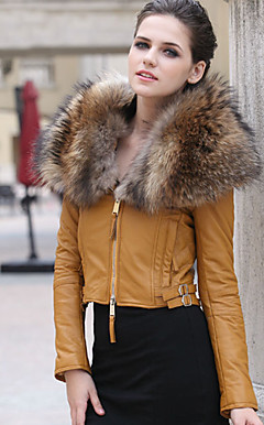Long Sleeve Raccoon Shawl Collar Lambskin Leather Casual/Office Jacket (More Colors)