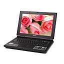 hasee 13.3 &amp;quot;TFT / Intel Celeron-M 1.6GHz cpu/512mb DDR2 ram/40g hdd porttil notebook Tianyun q500d3
