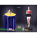 Portable Regular FIR Far Infrared Loss Weight and Detox Dry Heat Sauna Spa