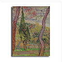 Stretched Canvas Handmade The Park at the Saint-Paul Hospital c.1889 Painting by Vincent Van Gogh  0192-YCF103221