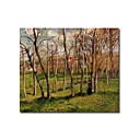Stretched Handmade Meadow at Bazincourt Painting by Camille Pissarro(0192-YCF103925)