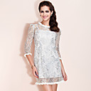 TS Sliver Lace Cute Dress