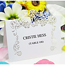 Beautiful Floral Theme Place Card (Set of 12)