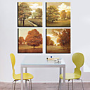 Stretched Canvas Print Landscape Set of 4 1301-0171